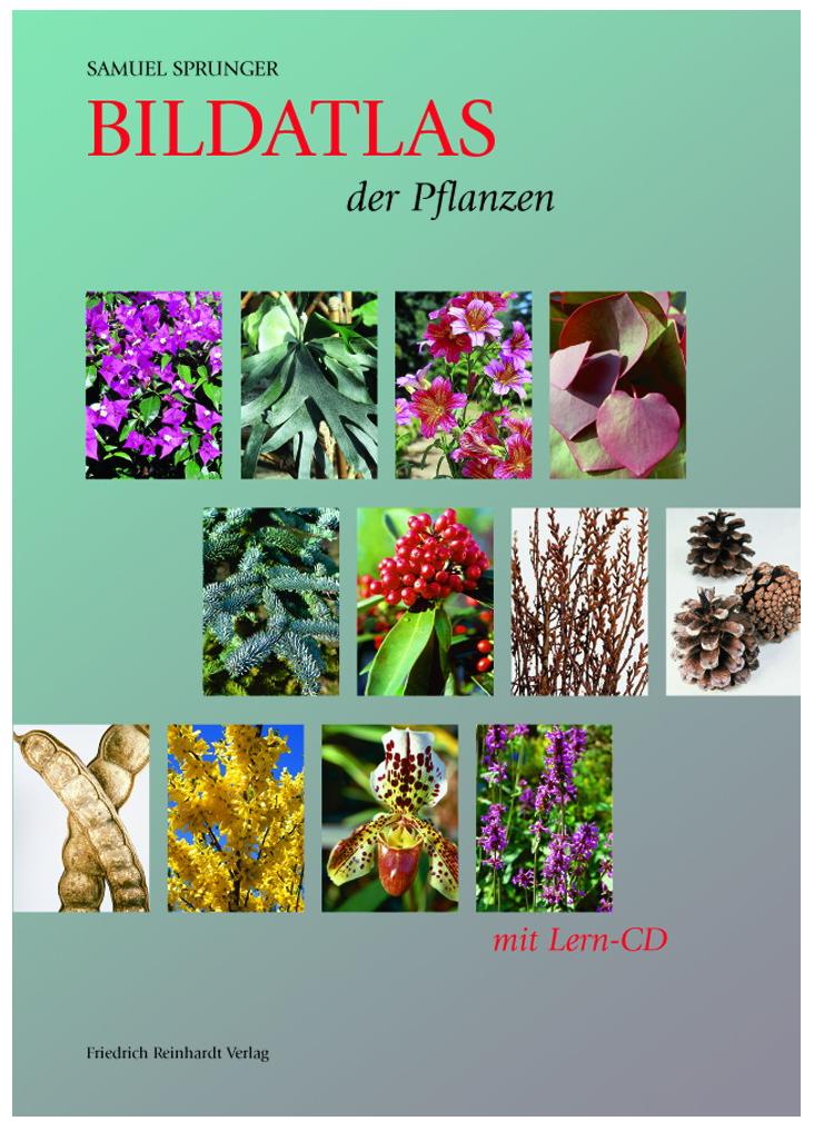 ccd2e89107bcea bildatlas-der-pflanzen-mit-lern-cd.jpg